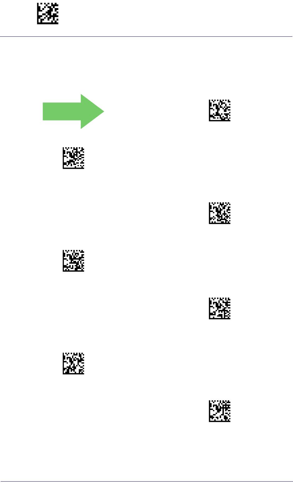 Bedienungsanleitung Datalogic PowerScan PM9500 (Seite 135